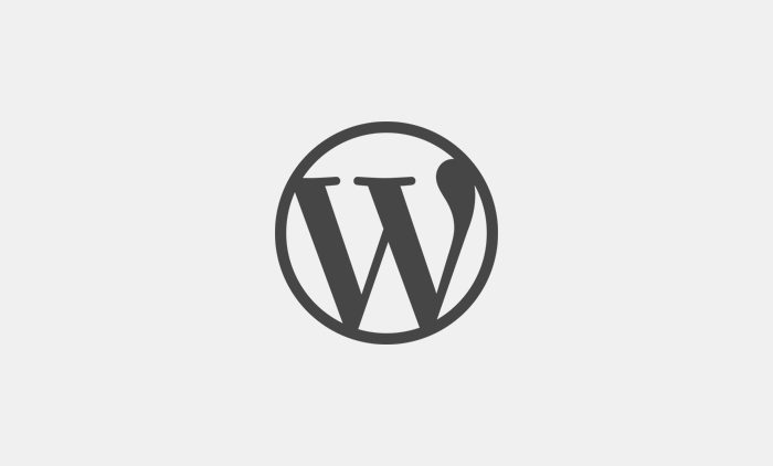 Wordpress snippet